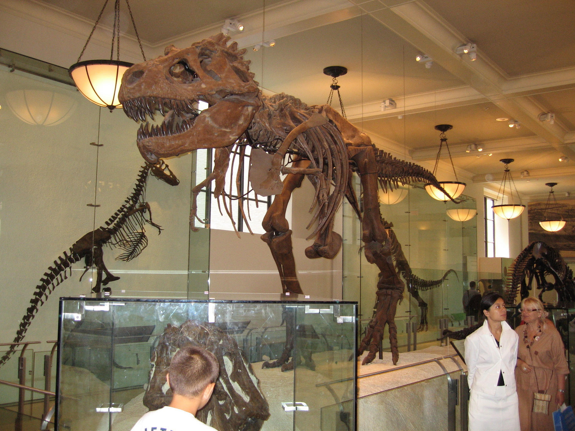 Natural History Museum Nyc Eating